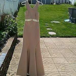 Teaze Me long beige gown size 3